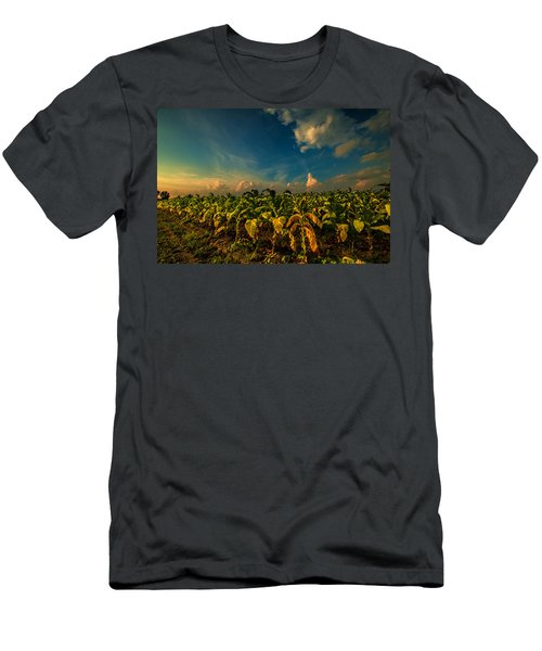 Men's T-Shirt (Slim Fit) featuring the photograph Summer Tobacco  by John Harding