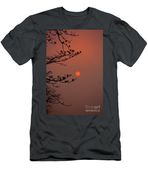 Sun Blossoms Nature Asia  Men's T-Shirt (Athletic Fit)