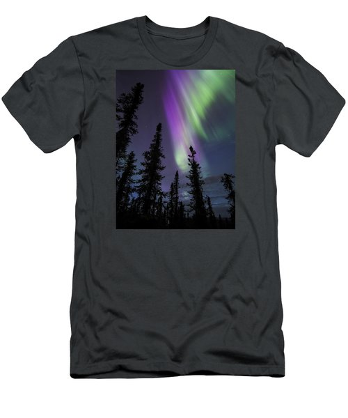 Sun-kissed Aurora Above The Spruces Men's T-Shirt (Athletic Fit)