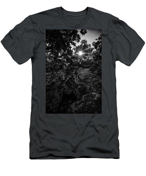 Sun Through The Trees Men's T-Shirt (Slim Fit) by Paul Seymour