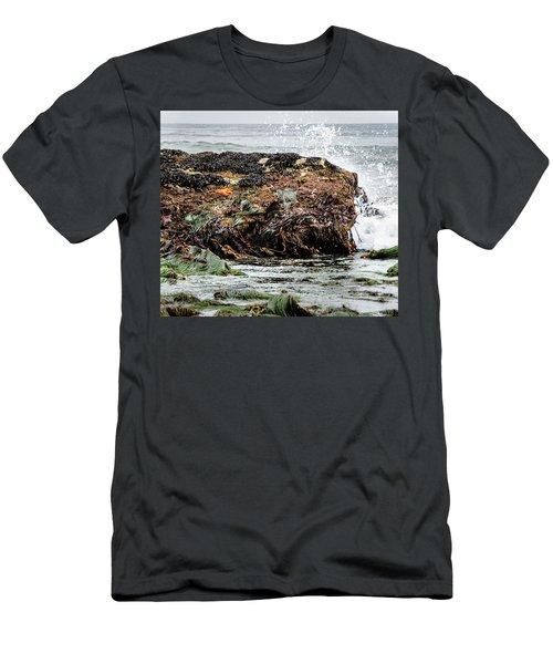 Sunbathing Starfish Men's T-Shirt (Athletic Fit)