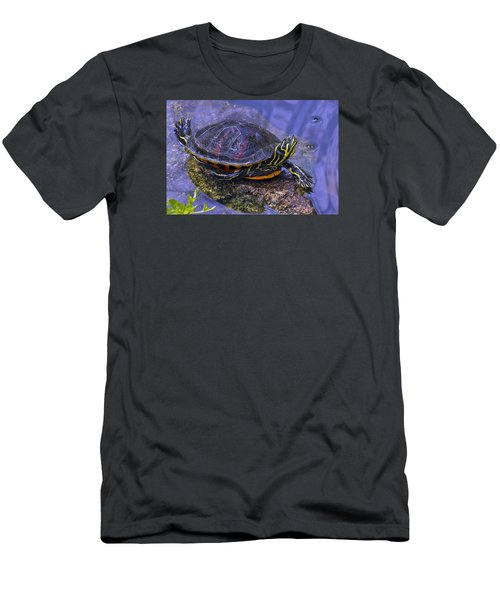 Sunbathing Turtle Men's T-Shirt (Athletic Fit)
