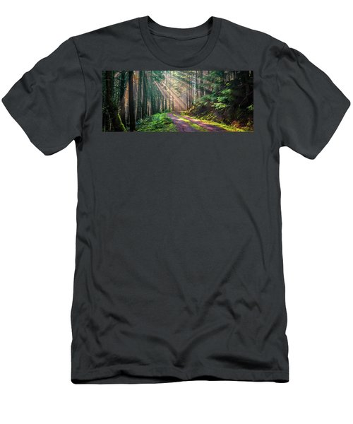 Sunbeams In Trees Men's T-Shirt (Athletic Fit)