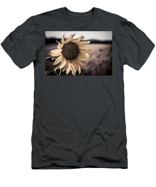 Sunflower Solitude Men's T-Shirt (Athletic Fit)