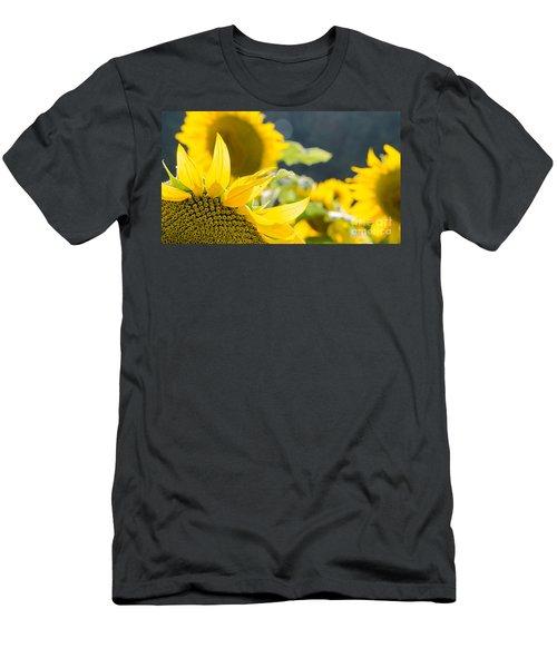 Sunflowers 14 Men's T-Shirt (Athletic Fit)