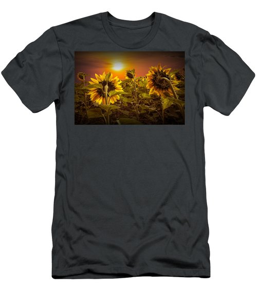 Sunflowers Facing The Sunset Men's T-Shirt (Athletic Fit)