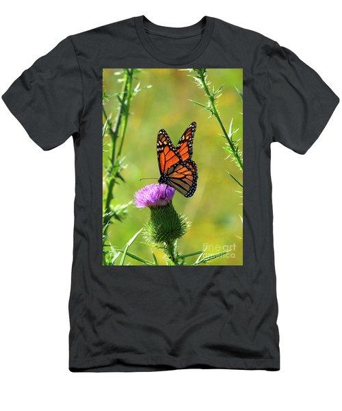Sunlit Monarch  Men's T-Shirt (Athletic Fit)