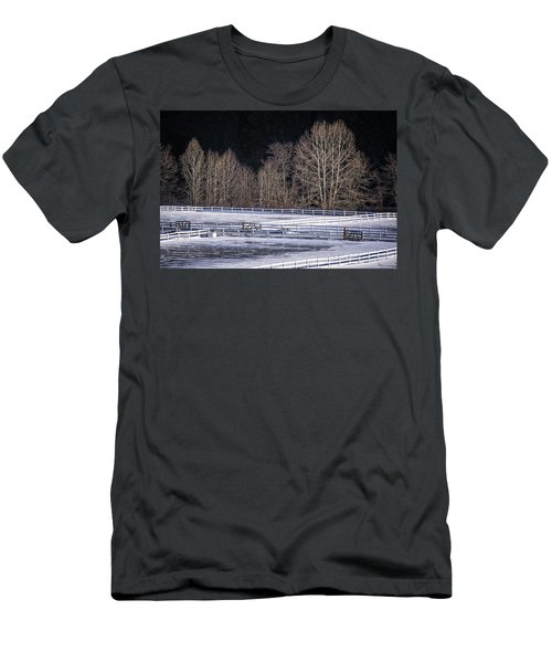 Sunlit Trees Men's T-Shirt (Athletic Fit)