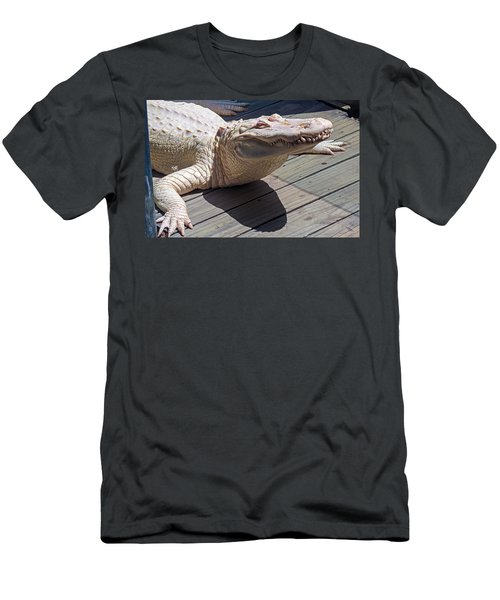 Sunning Albino Alligator Men's T-Shirt (Slim Fit) by Kenneth Albin