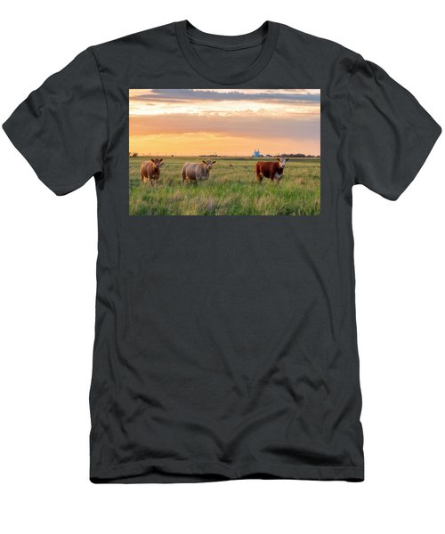 Men's T-Shirt (Athletic Fit) featuring the photograph Sunset Cattle by Russell Pugh