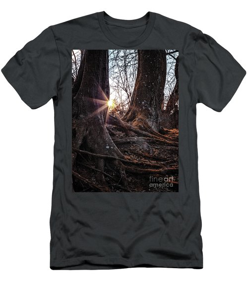 Sunset In The Woods Men's T-Shirt (Athletic Fit)