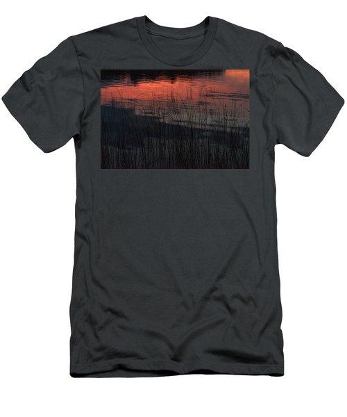 Sunset Reeds Men's T-Shirt (Athletic Fit)