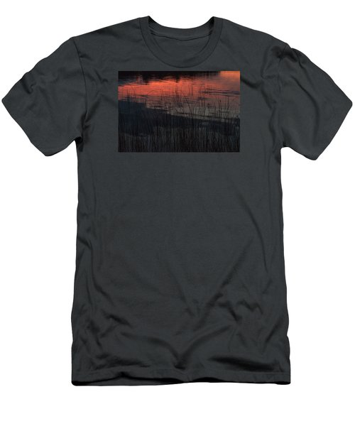 Sunset Reeds Men's T-Shirt (Athletic Fit)
