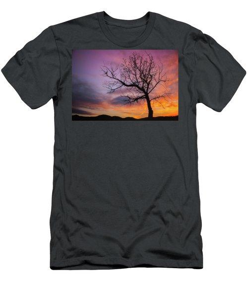 Sunset Tree Men's T-Shirt (Slim Fit) by Darren White