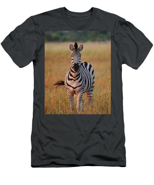 Sunset Zebra Men's T-Shirt (Athletic Fit)