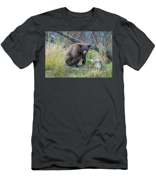 Surprised Bear Men's T-Shirt (Slim Fit) by Scott Warner