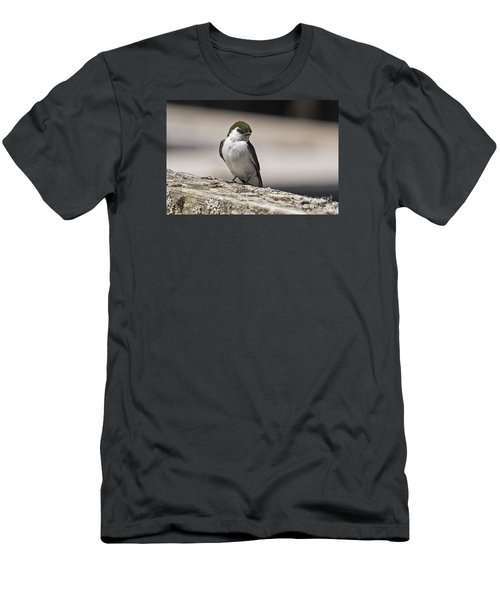 Men's T-Shirt (Slim Fit) featuring the photograph Swallow by Inge Riis McDonald