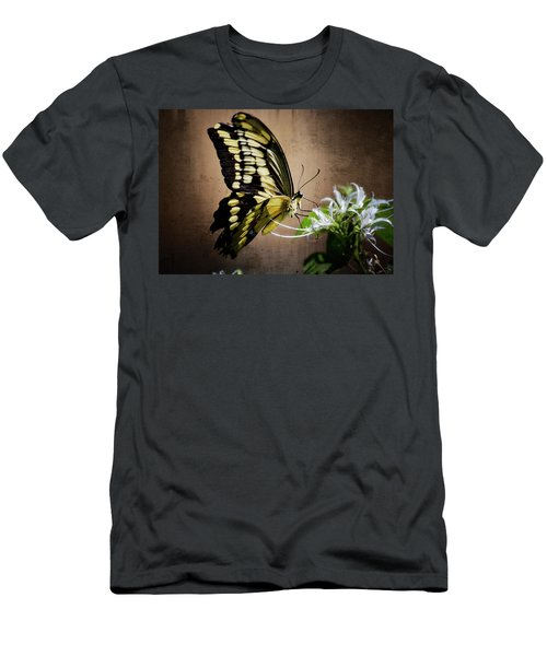 Swallowtail Men's T-Shirt (Athletic Fit)