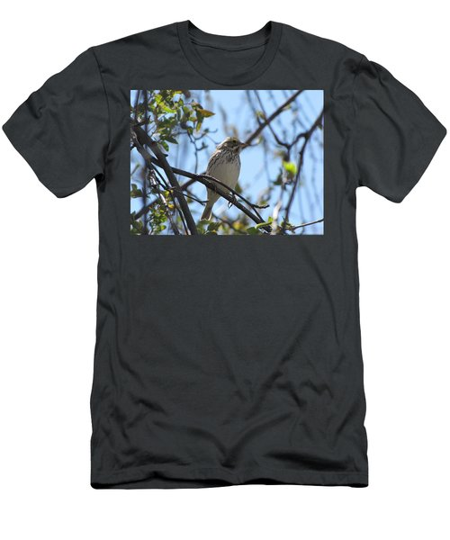 Sweetest Song Men's T-Shirt (Athletic Fit)