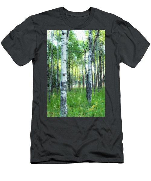 Tahoe Birch Men's T-Shirt (Athletic Fit)