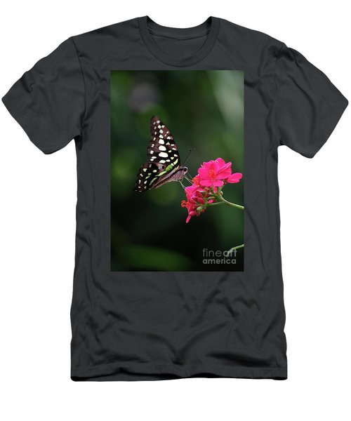 Tailed Jay Butterfly -graphium Agamemnon- On Pink Flower Men's T-Shirt (Athletic Fit)
