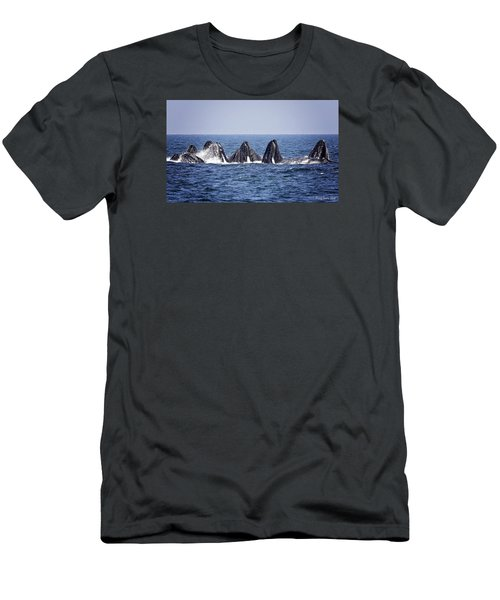 Ten Lunge Feeding Humpbacks Men's T-Shirt (Athletic Fit)