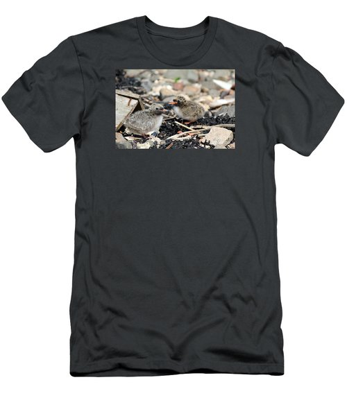 Men's T-Shirt (Slim Fit) featuring the photograph Tern Chicks by David Grant