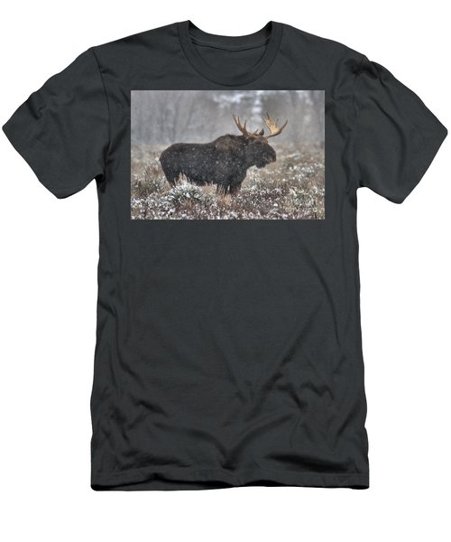 Men's T-Shirt (Slim Fit) featuring the photograph Teton Snowy Moose by Adam Jewell