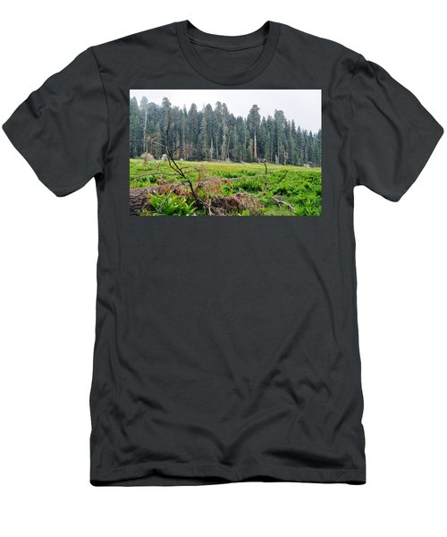 Men's T-Shirt (Slim Fit) featuring the photograph Tharps Log Meadow by Kyle Hanson