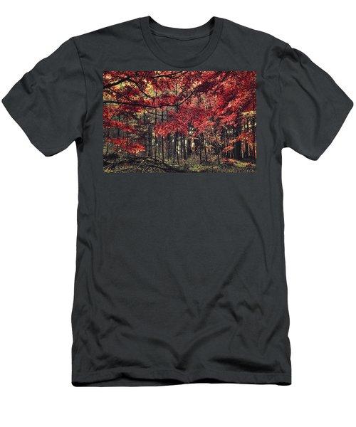 The Autumn Colors Men's T-Shirt (Athletic Fit)