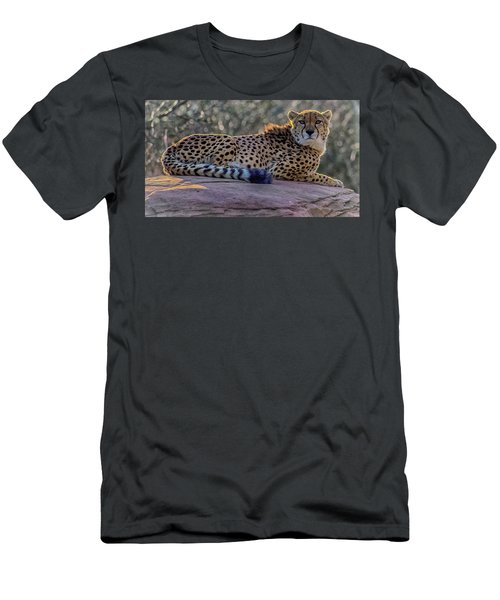 The Cheetah Men's T-Shirt (Athletic Fit)