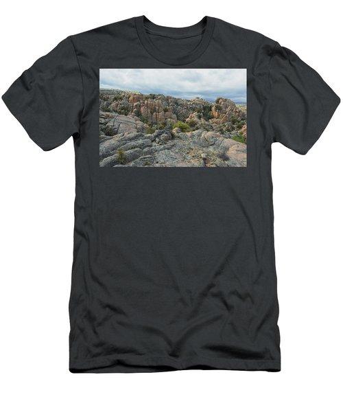 The Dells Men's T-Shirt (Athletic Fit)