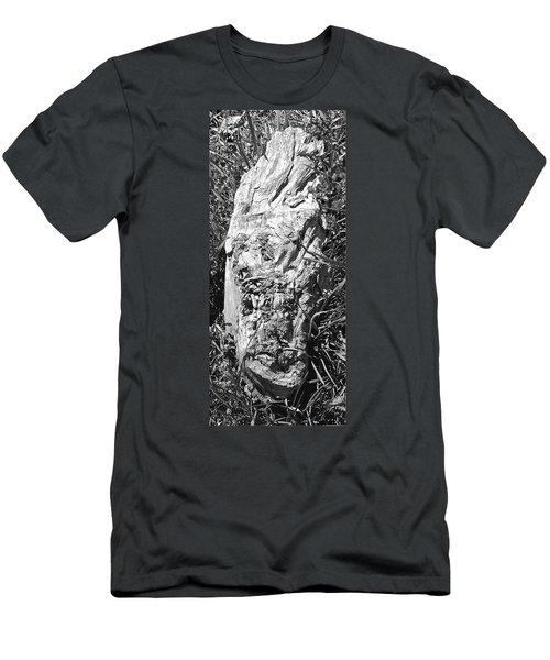 The Fallen - Unhidden Door Men's T-Shirt (Athletic Fit)
