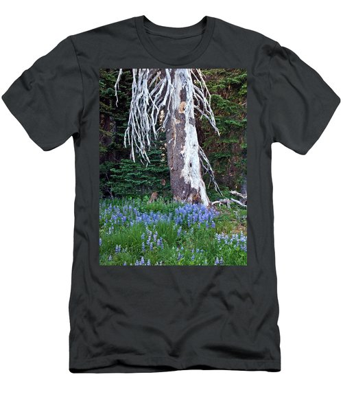 The Ghost Tree Men's T-Shirt (Athletic Fit)