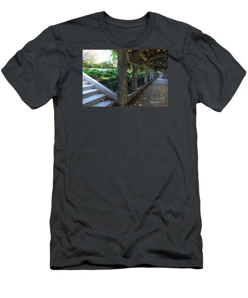 The Grape Arbor Path Men's T-Shirt (Slim Fit) by David Blank