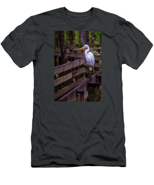 The Great Egret Men's T-Shirt (Athletic Fit)