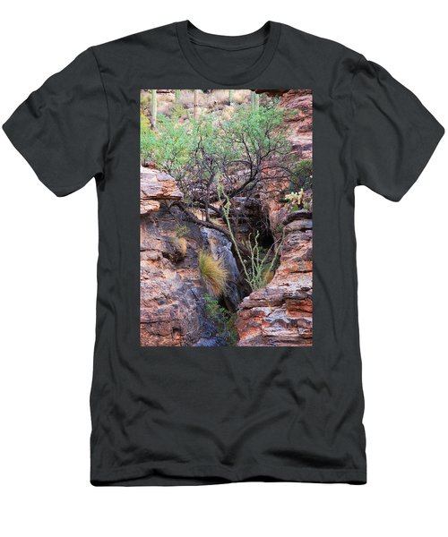 The Hole - Mount Lemmon Men's T-Shirt (Athletic Fit)