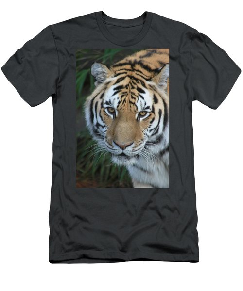 Men's T-Shirt (Slim Fit) featuring the photograph The Hunter by Laddie Halupa