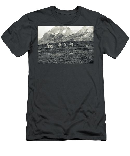 The Lamas Men's T-Shirt (Slim Fit) by Andrew Matwijec