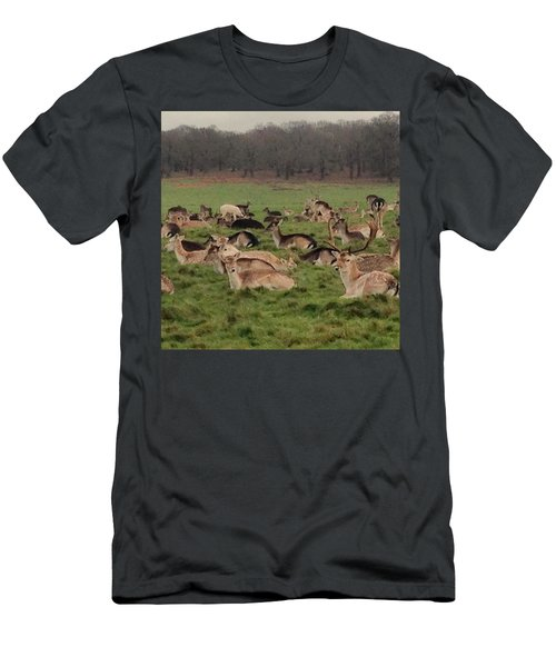 The Land Of Deers Men's T-Shirt (Athletic Fit)