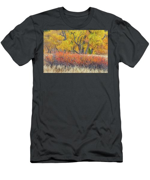 The Leaves That Will Become The Essential Component Of Soil Called Humus  Men's T-Shirt (Athletic Fit)