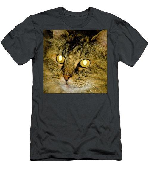 The Lion Cat Men's T-Shirt (Athletic Fit)