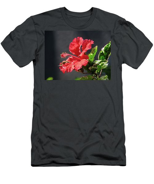 The Mallow Hibiscus Men's T-Shirt (Athletic Fit)