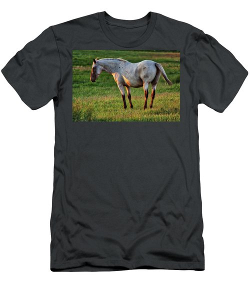 The Mare Men's T-Shirt (Athletic Fit)