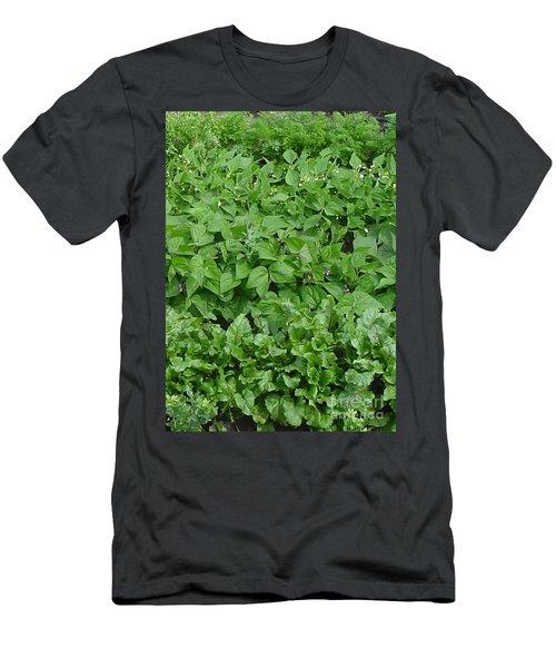 The Market Garden Portrait Men's T-Shirt (Athletic Fit)