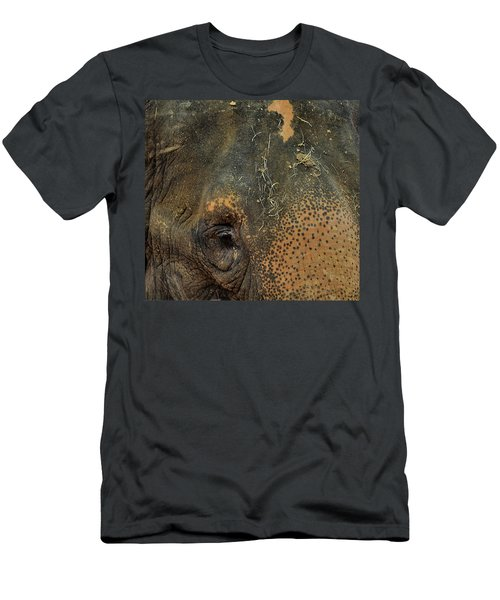 The Matriarch Men's T-Shirt (Athletic Fit)