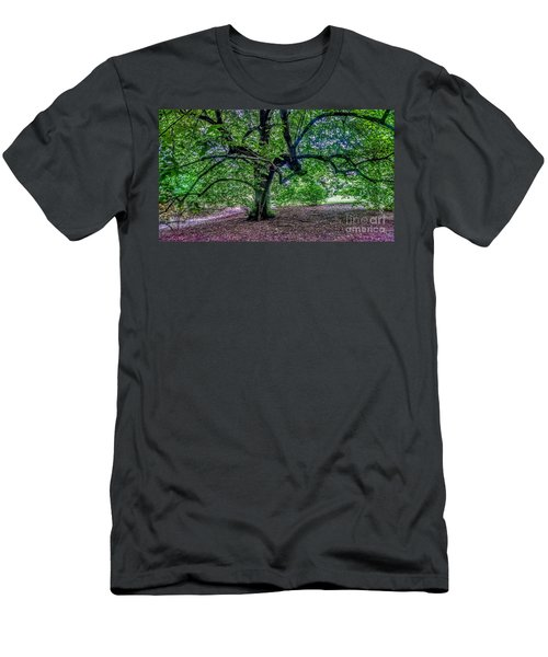 The Old Tree At Frelinghuysen Arboretum Men's T-Shirt (Athletic Fit)
