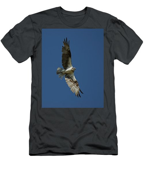 The Osprey Men's T-Shirt (Athletic Fit)
