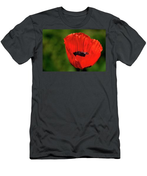 The Poppy Next Door Men's T-Shirt (Athletic Fit)