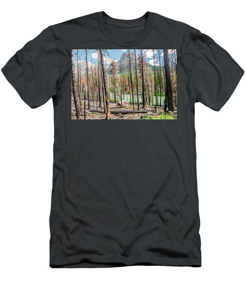 The Revealed View Men's T-Shirt (Athletic Fit)